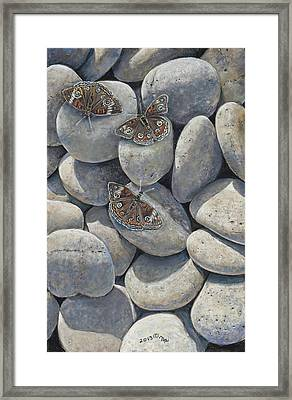Sunshine And Butterflies Framed Print