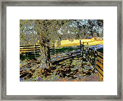 Framed Print featuring the photograph Sunshine Down On The Farm by Diane Miller
