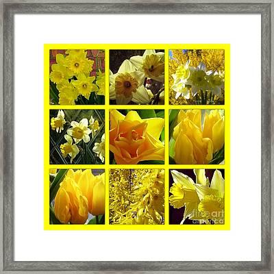 Sunshine Gold Picture Window Framed Print