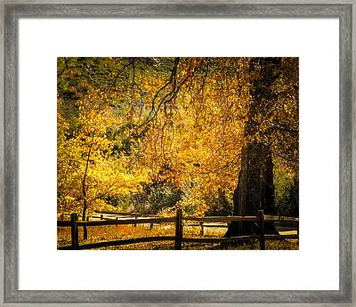 Sunshine Hwy Framed Print