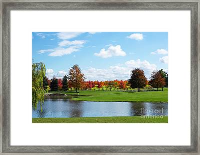 Sunshine On A Country Estate Framed Print by Barbara McMahon