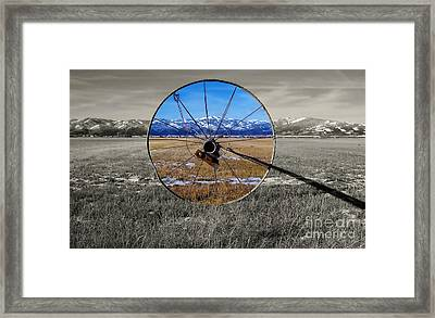 Sunshine On A Gray Day Framed Print by Janice Westerberg