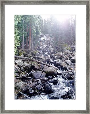 Sunshine On Brook Framed Print