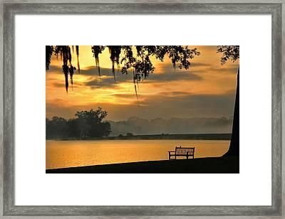 Sunshine On My Shoulders Framed Print by Leslie Kirk