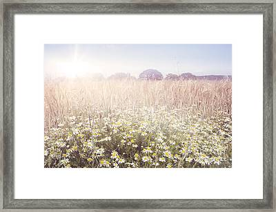 Sunshine Over The Fields Framed Print by Natalie Kinnear