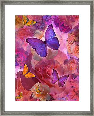 Sunshine Rainbow Flowers Framed Print