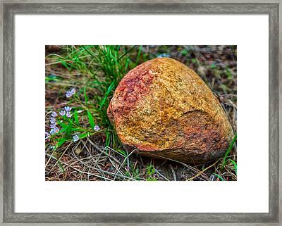 Sunshine Rock Framed Print by Omaste Witkowski