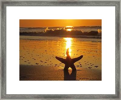 Sunshine Trail Framed Print