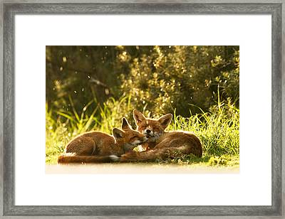 Sunshower Framed Print by Roeselien Raimond