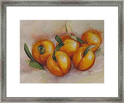 Sunstruck Peaches Framed Print by Tracy Male