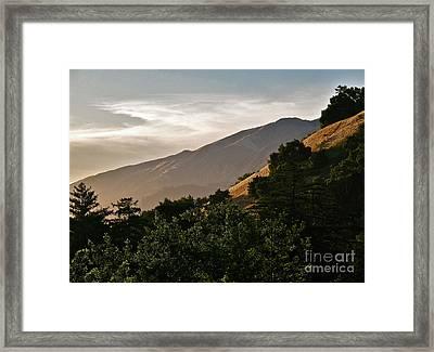 Sunswept  Framed Print
