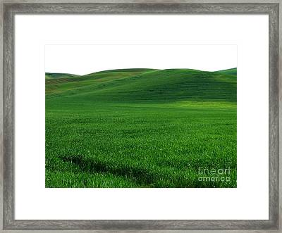 Super Greens Land Framed Print by Boon Mee