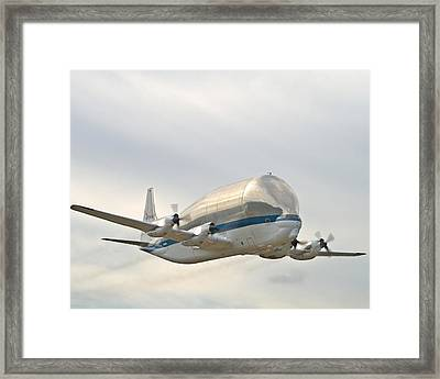 Super Guppy Framed Print