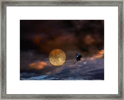 Super Moon 2013 Framed Print by Angela A Stanton