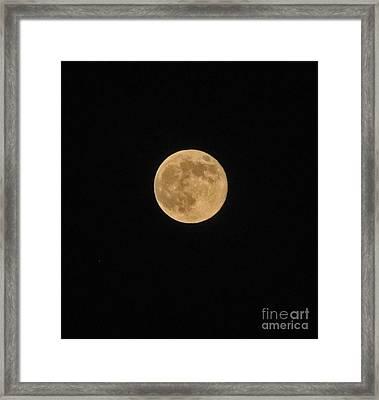 Super Moon 8 10 14 Framed Print