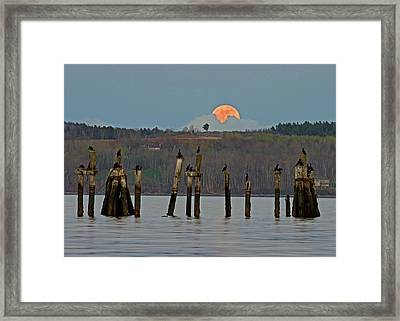 Framed Print featuring the photograph Super Moon  by Barbara West