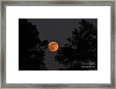 Super Moon Framed Print by Marc Mesa