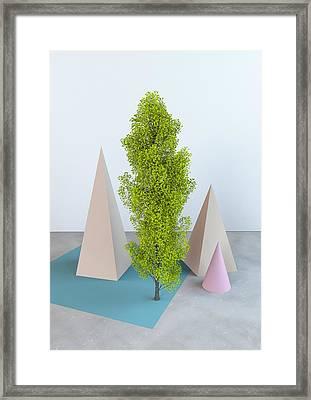 Super Nature Framed Print
