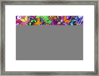 Super Rainbow Butterflies Framed Print by Alixandra Mullins