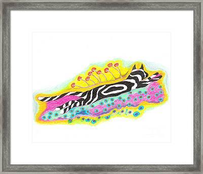 Super Sammy Framed Print