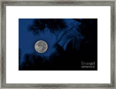 Supermoon August 2014  Framed Print by Lynda Dawson-Youngclaus