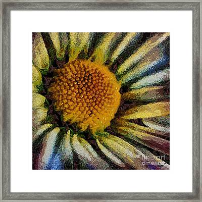 Supernova Framed Print by Dragica  Micki Fortuna