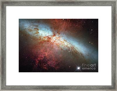 Supernova In Nearby Galaxy M82 Framed Print by Science Source
