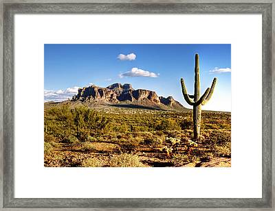 Supes-14 Framed Print by George Lenz