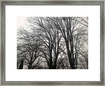 Sur Le Boulevard Framed Print