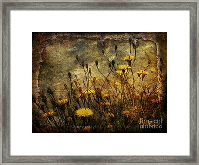 Surf And Yellow Flowers Framed Print by Jim Wright