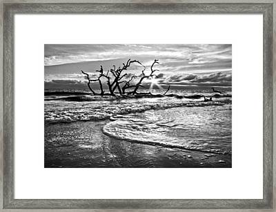 Surf At Driftwood Beach Framed Print by Debra and Dave Vanderlaan