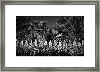 Surf Board Fence Maui Hawaii Black And White Framed Print by Edward Fielding