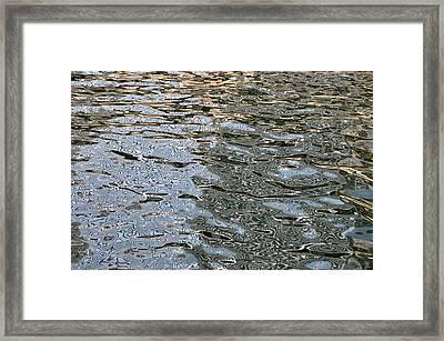 Surface Glide Framed Print by David Flitman