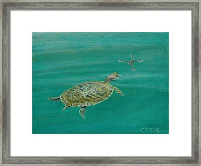 Surface Tension Framed Print by Rob Dreyer