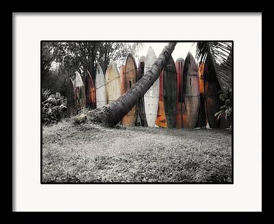 Linda Dunn Framed Prints
