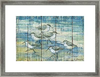 Surfside Sandpipers - Distressed Framed Print by Paul Brent