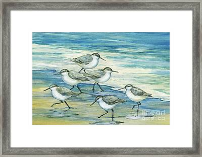 Surfside Sandpipers Framed Print by Paul Brent