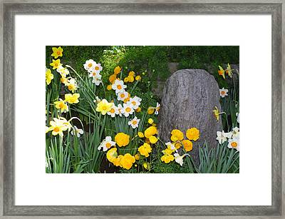 Framed Print featuring the photograph Surounded By Beauty by Sheila Byers