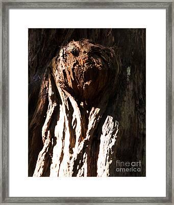 Surprise Bark Framed Print by Juan Romagosa