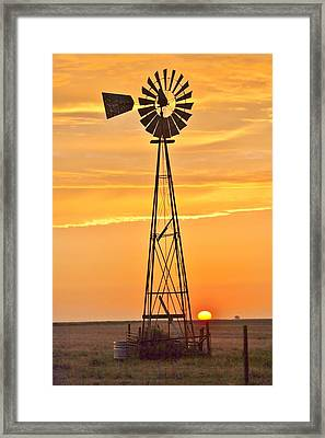 Surprise Sun Framed Print by Shirley Heier