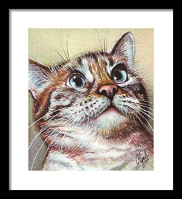 Watercolor Pet Portraits Framed Prints