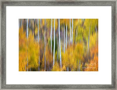Surreal Aspen Tree Magic Abstract Art Framed Print