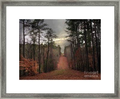 Surreal Autumn Fall South Carolina Tree Landscape Framed Print by Kathy Fornal