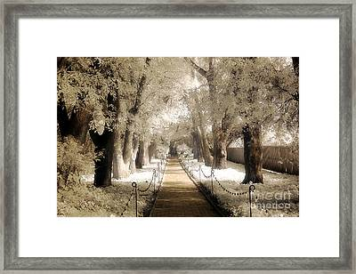 Surreal Dreamy Infrared Sepia - Hopeland Gardens Park South Carolina Pathway Nature Landscape  Framed Print by Kathy Fornal
