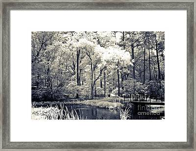 Surreal Dreamy Infrared Trees Nature Landscape Framed Print by Kathy Fornal