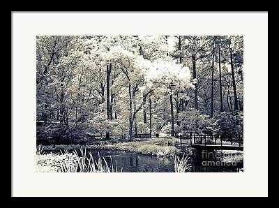 South Carolina Infrared Landscape Framed Prints