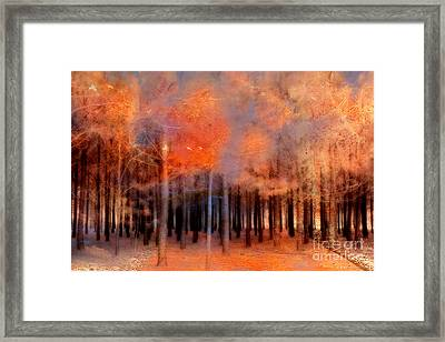 Surreal Fantasy Ethereal Trees Autumn Fall Orange Woodlands Nature  Framed Print by Kathy Fornal