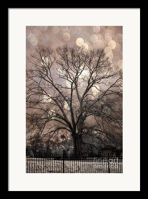 Sepia Brown Haunting Trees Framed Prints