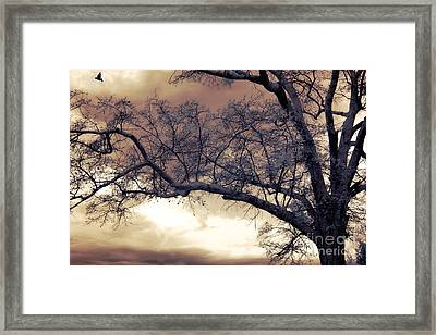 Surreal Fantasy Gothic South Carolina Tree Bird Framed Print by Kathy Fornal