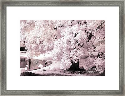 Surreal Fantasy Pink Flamingo Infrared Park Framed Print by Kathy Fornal